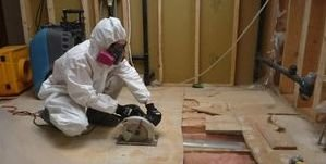 Technician Removing Sewage Damage In Flooring